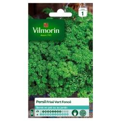 Vilmorin - Persil Frisé Vert Foncé