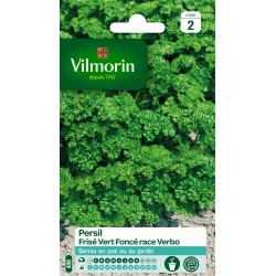 Vilmorin - Persil Frisé Race Verbo