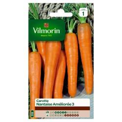 Vilmorin - Carotte Nantaise améliorée 3