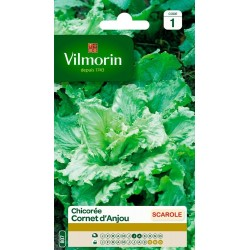 Vilmorin - Cornet d'Anjou