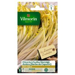 Vilmorin - Chicorée Barbe De Capucin