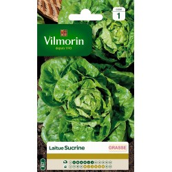 Vilmorin -  Laitue Sucrine type Sucrette