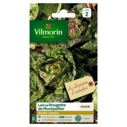 Vilmorin - Laitue d'hiver Rougette de Montpellier