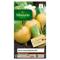 Vilmorin - Navet jaune Boule d'Or - LA