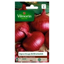 Vilmorin - Oignon Rouge