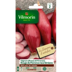 Vilmorin - Oignon Rouge Florence