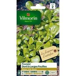 Vilmorin - Pourpier à Large Feuille