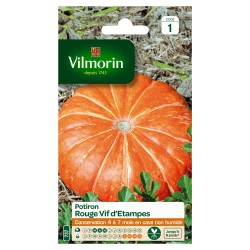 Vilmorin - Potiron Rouge Vif d'Etampes