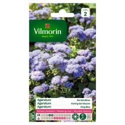Vilmorin - Agératum Roi des Bleus