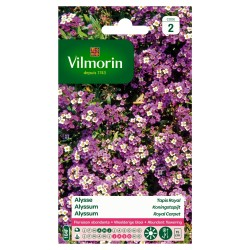 Vilmorin - Alysse Tapis Royal