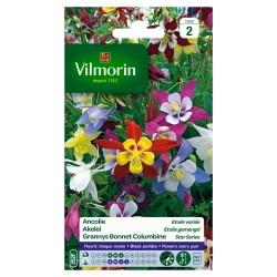 Vilmorin - Ancolie Etoile Mix