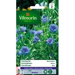 Vilmorin - Centaurée bleuet double bleue