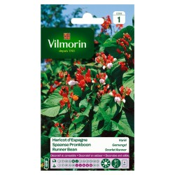 Vilmorin - Haricot Espagne Varie Serie 1
