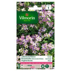 Vilmorin - Julienne de Mahon Mix