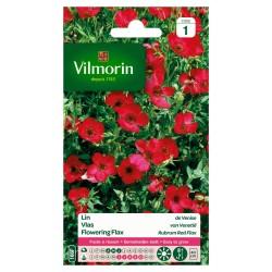 Vilmorin - Lin de Venise Rouge