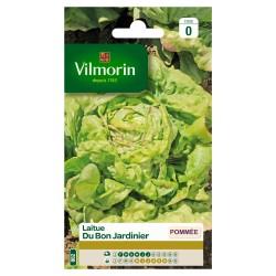 Vilmorin - Laitue du Bon Jardinier