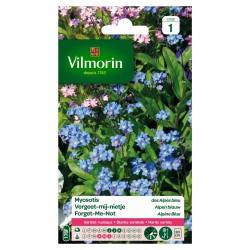 Vilmorin - Myosotis Des Alpes Bleu