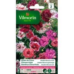 Vilmorin - Oeillet de Chine double Vilmorin - varié