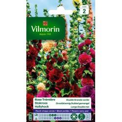 Vilmorin - Rose Trémière Double Grande Variée
