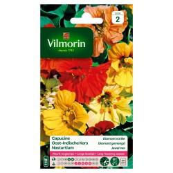 Vilmorin - Capucine Diamant Mix