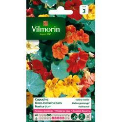 Vilmorin - Capucine Valina variée