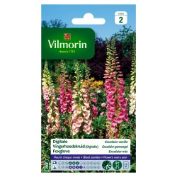 Vilmorin - Digitale Mix
