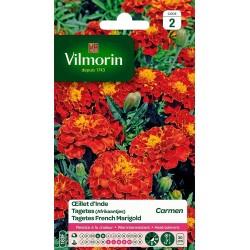 Vilmorin - Oeillet d'Inde Carmen