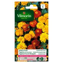 Vilmorin - Oeillet d'Inde Double Nain Varié
