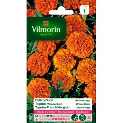 Vilmorin - Oeillet d'Inde Globe Orange