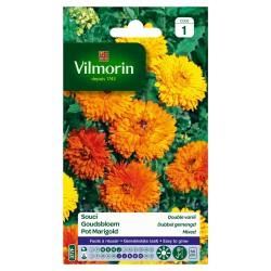 Vilmorin - Souci Double Varié