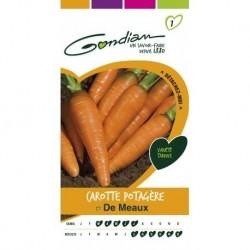 Gondian - Carotte Potagère de Meaux Orange