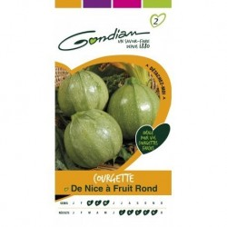 Gondian - Courgette de Nice A Fruit Rond
