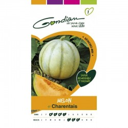 Gondian - Melon Charentais