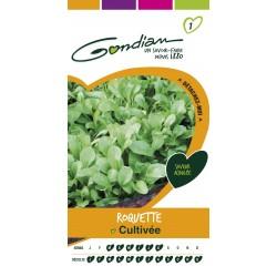 Gondian - Roquette Cultivée