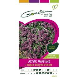 Gondian - Alysse Tapis Royal Violet