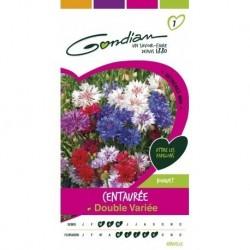 Gondian - Centaurée Double Variée Multicolore