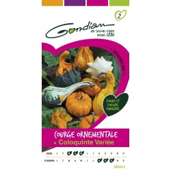 Gondian - Courge Coloquinte