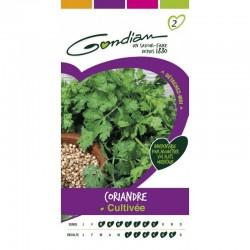 Gondian - Coriandre Cultivée
