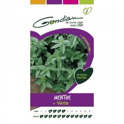Gondian - Menthe Verte