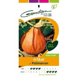 Gondian - Potiron Potimarron
