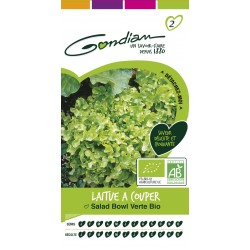 Gondian - Laitue à couper Salad Bowl verte bio