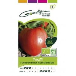 Gondian - Tomate Cœur de Bœuf Bio