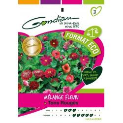 Gondian - Jachère Fleurie Ton Rouge