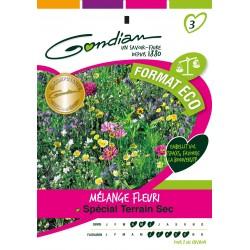 Gondian - Jachère Fleurie Terrain sec