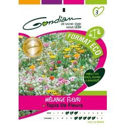 Gondian - Jachère Fleurie Tapis Fleurs