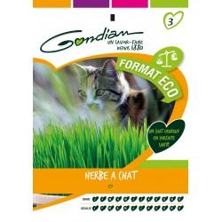Gondian - Herbe à chat Orge