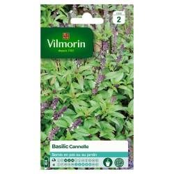 Vilmorin - Basilic Cannelle