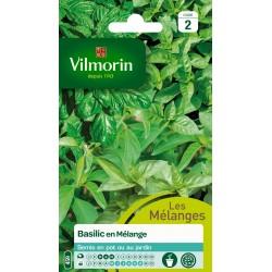 Vilmorin - Basilic en mélange - MEL